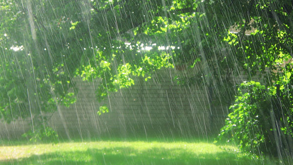 how to make the rain go away