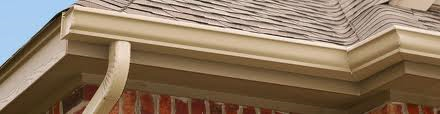 Tech Talk-Cleaning your gutters