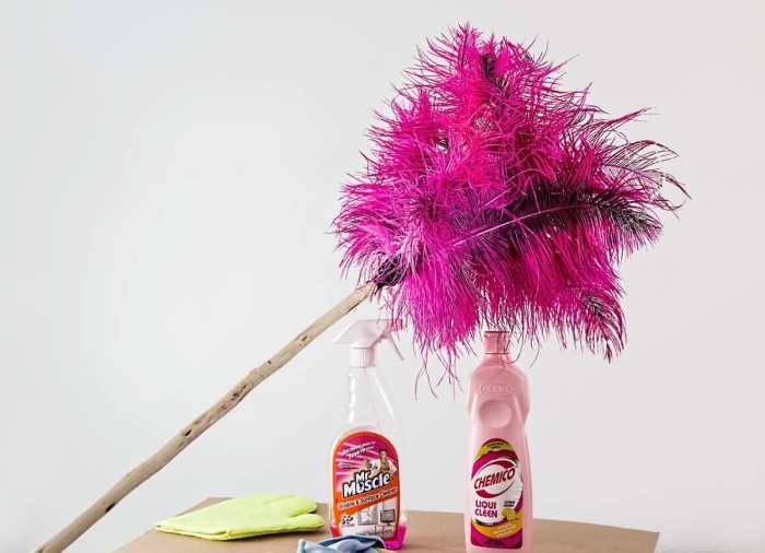 feather-duster-709124_1280