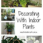 How To Decorate With Indoor Plants – #HIT