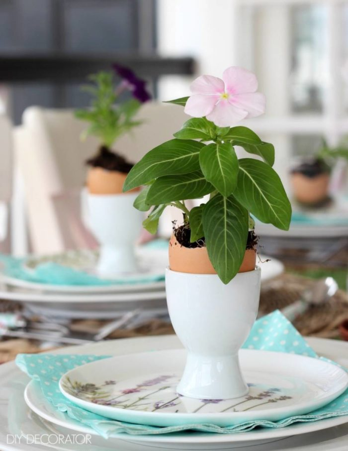 Easter-egg-flowers-in-cup-in-a-row