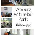 Decorating With Indoor Plants – Pen Y Llechwedd