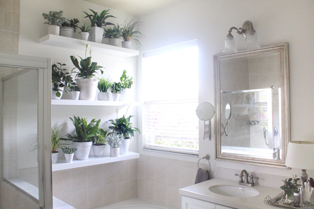 decorating with plants in the bathroom - the builder's wife
