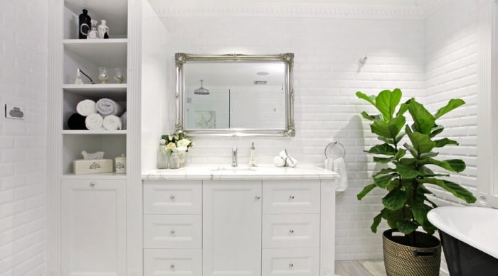 Decorating With Plants In The Bathroom The Builder 39 S Wife