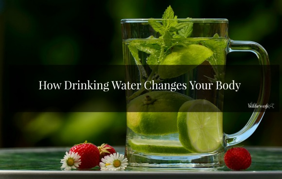 How Drinking Water Changes Your Body